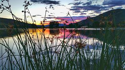 Photograph - Colorado Pretty  by Fiona Kennard