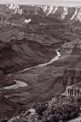 Colorado River At Desert View Grand Canyon Art Print by Steve Gadomski