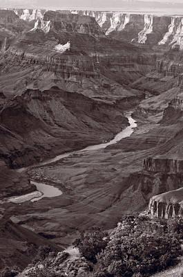 Colorado River At Desert View Grand Canyon Print by Steve Gadomski