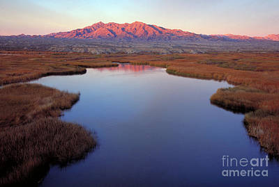 Photograph - Colorado River, Az by Jeffrey Greenberg