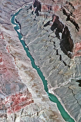 Photograph - Colorado River - Grand Canyon by Bob Slitzan