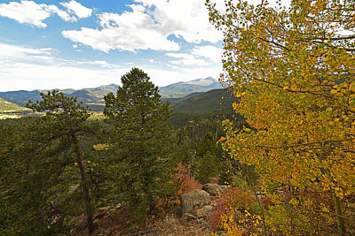 Photograph - Colorado Rockies National Park Fall Foliage Yellow Aspen by Toby McGuire