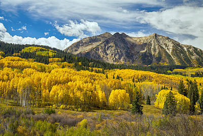 Photograph - Colorado Rocky Mountain Fall Foliage  by James BO  Insogna