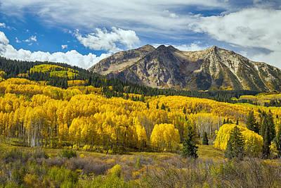 Photograph - Colorado Rocky Mountain Fall Foliage  by James BO Insogna