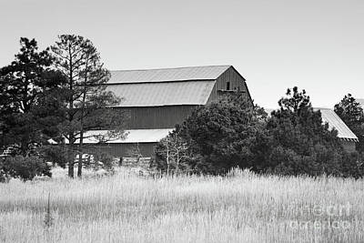 Photograph - Colorado Rustic Barn Landscape by Andrea Hazel Ihlefeld