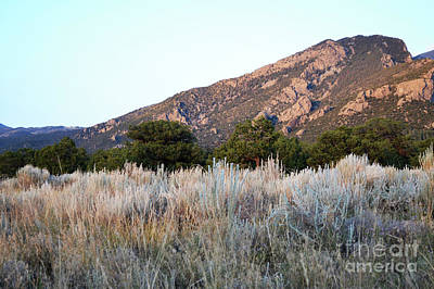 Photograph - Colorado Rustic Desert Mountain Landscape by Andrea Hazel Ihlefeld
