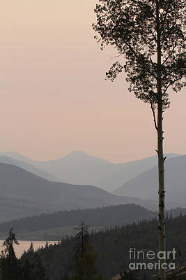 Photograph - Colorado Smokey Morning by Paula Guttilla