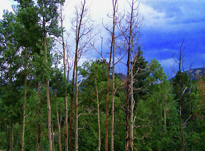 Painting - Colorado Springs Area Digital Oil #74 by Chris Flees