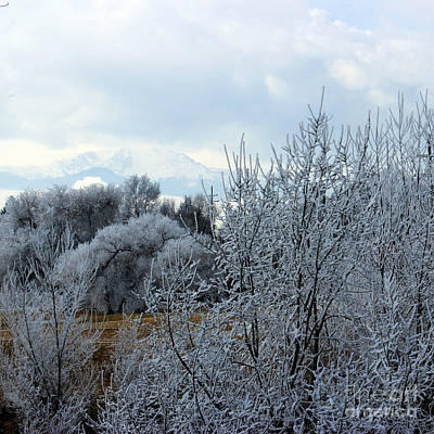 Photograph - Colorado Springs Winter by Arizona  Lowe