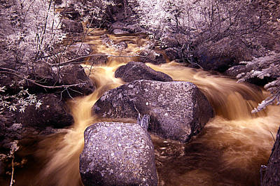 Photograph - Colorado Stream In Infrared by Thomas Bomstad