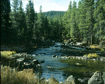 Colorado Stream1 Art Print