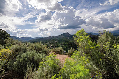 Photograph - Colorado Summer by Margaret Pitcher