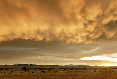 Photograph - Colorado Sunset Stormin by James BO Insogna