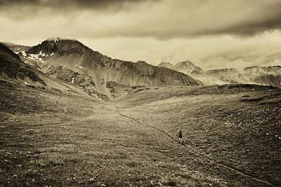Photograph - Colorado Trail  by Whit Richardson