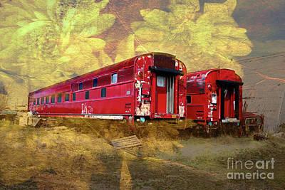 Digital Art - Colorado Trains W/ Flowers by Deborah Nakano