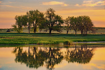 Photograph - Colorado Trees And Lake At Sunrise by John De Bord