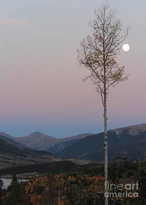 Photograph - Colorado Twilight by Paula Guttilla