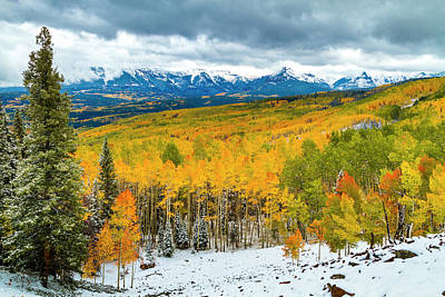 Colorado Valley Of Autumn Color Art Print