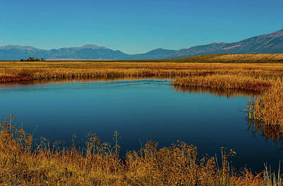 Photograph - Colorado Wildlife Sanctuary 2 by Elijah Knight