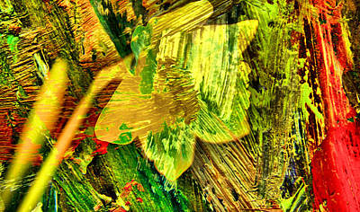 Colored Daffodil Abstract Art Print by Jeff Swan
