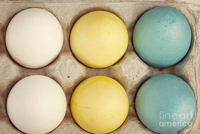 Photograph - Colored Eggs by Juli Scalzi