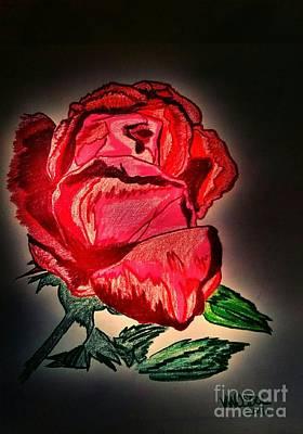 Colored Pencil Detailed Rose Original