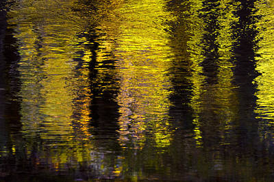 Photograph - Colored Reflections by Ken Barrett