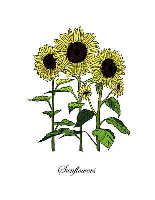 Mixed Media - Colored Sunflowers. Botanical by Masha Batkova
