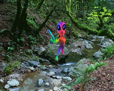 Photograph - Colorful Alien At Creek by Ben Upham III