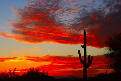 Photograph - Colorful Arizona Sunset by James BO Insogna