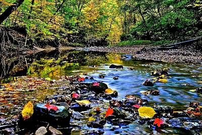Photograph - Colorful Autumn Leaves And Water by Frozen in Time Fine Art Photography