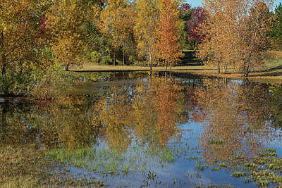 Photograph - Colorful Autumn Pond Reflections by James BO Insogna