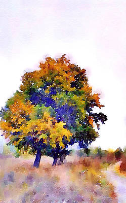 Colorful Autumn Art Print by Steve K