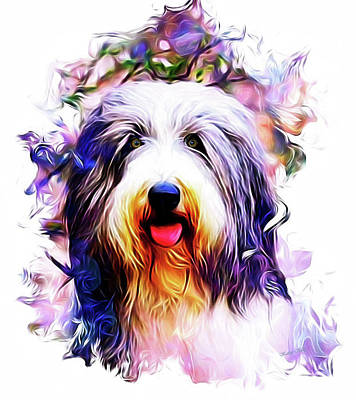 Scottish Dog Digital Art - Colorful Bearded Collie by Kathy Kelly