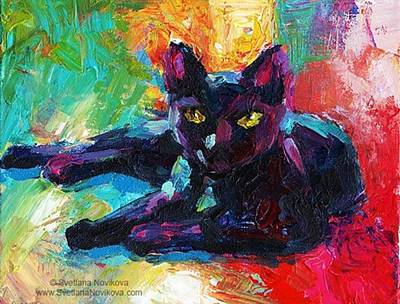 Pets Photograph - Colorful Black Cat Painting By Svetlana by Svetlana Novikova