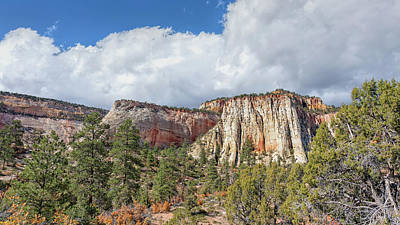 Photograph - Colorful Bluffs by John M Bailey