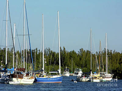 Photograph - Colorful Boats In The Indian River Lagoon by D Hackett