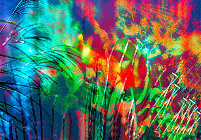 Mixed Media - Colorful Bold Abstract by Femina Photo Art By Maggie
