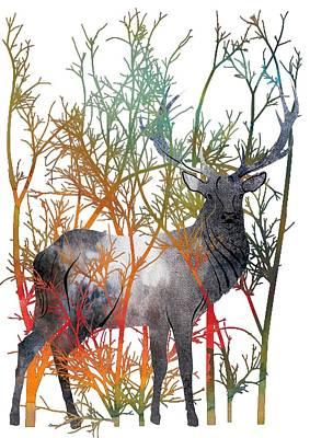 Colorful Buck 2 Art Print by Diana Van