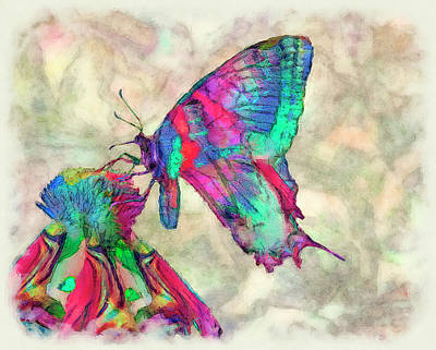 Lined Quilts Painting - Colorful Butterfly 2 by Jack Zulli