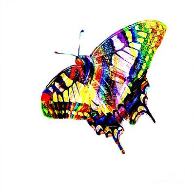Photograph - Colorful Butterfly by Annie Zeno