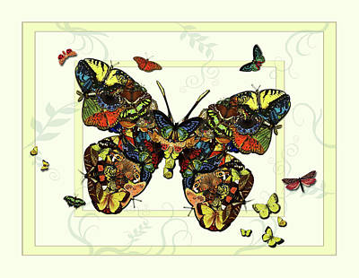 Painting - Colorful Butterfly Collage by Deborah Smith
