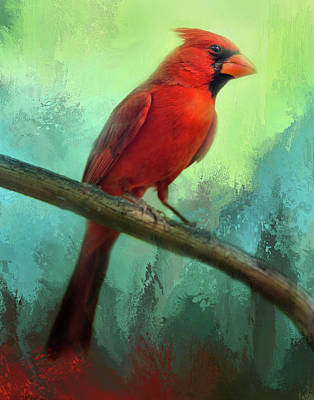 Photograph - Colorful Cardinal by Barbara Manis