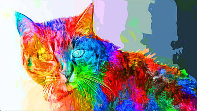 Painting - Colorful Cat by Asar Studios