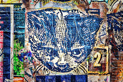 Photograph - Colorful Cat Graffiti Number 1 by Carol Leigh