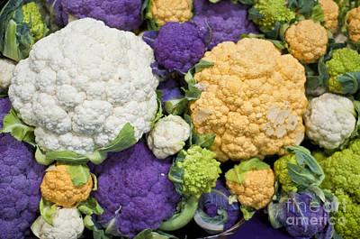 Colorful Cauliflower Art Print