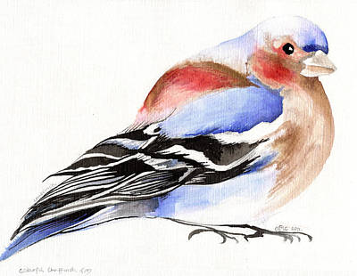 Finch Painting - Colorful Chaffinch by Nancy Moniz