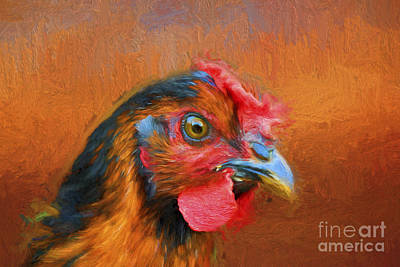 Colorful Chicken Art Print by Darren Fisher