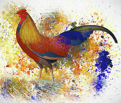 Mixed Media - Colorful Chicken Wall Art by Georgiana Romanovna