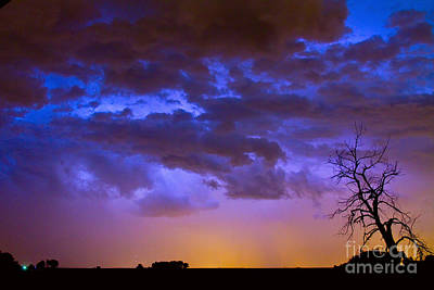 Colorful Cloud To Cloud Lightning Art Print